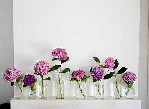 Jaulas Decoracion Ikea ~ Nuestras ideas se basan en la decoraci?n r?stica y campestre